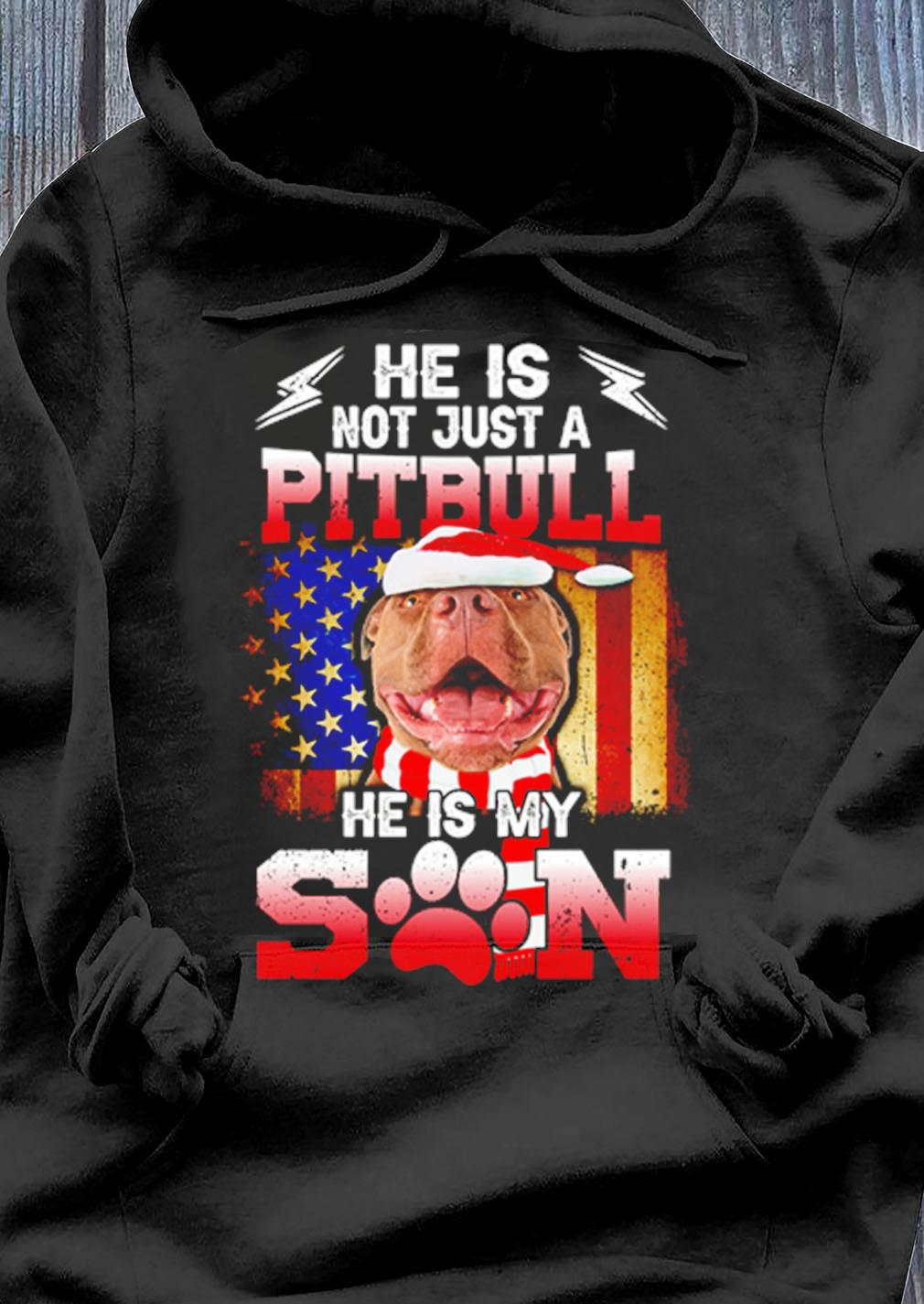 He Is Not Just A Pitbull He Is My Son Santa American Christmas Sweater Hoodie